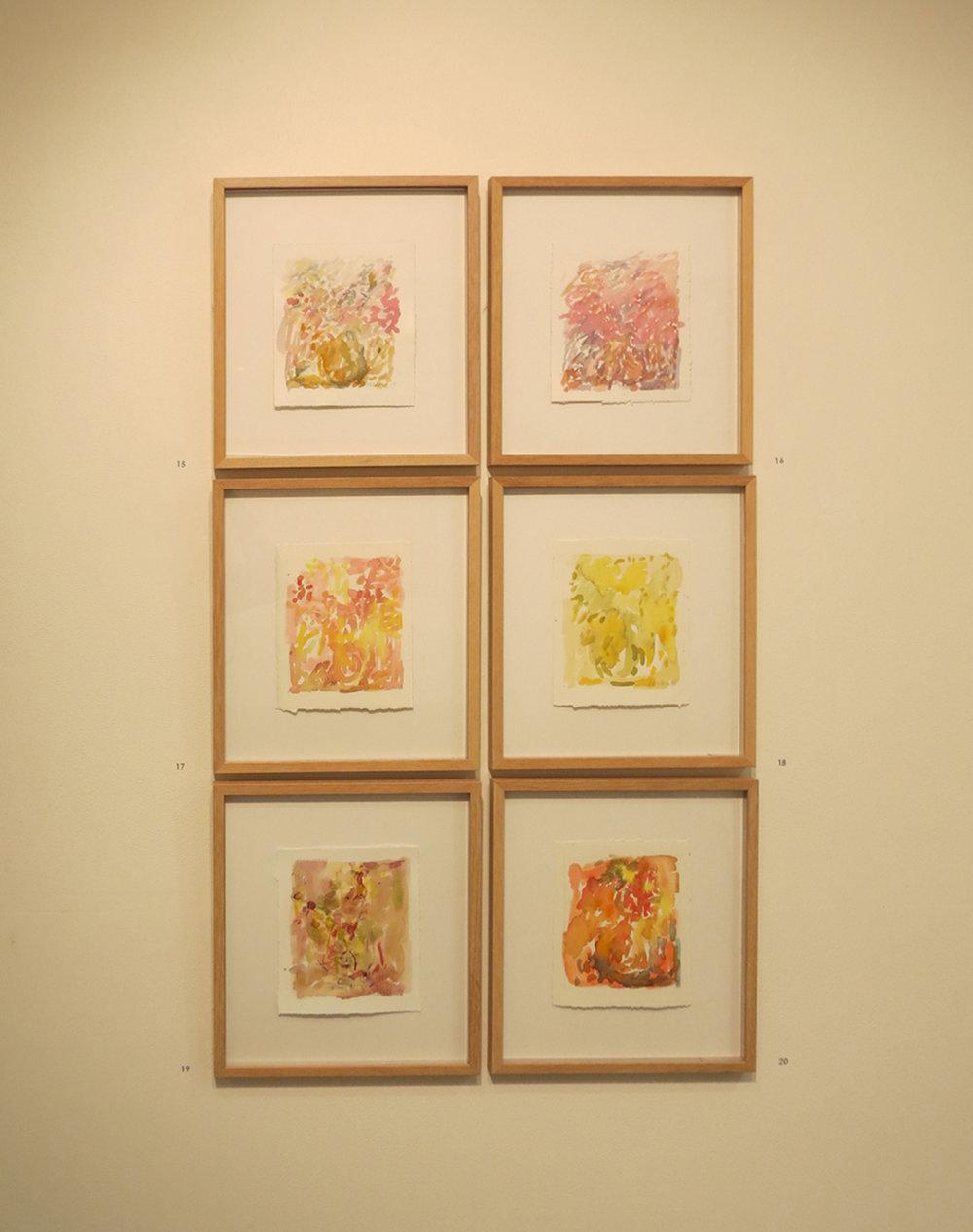 15. - 20. Jo Darvall, 'Still Life Study 1-6' Installation view, 2015, Watercolour on paper, 16 x 14cm, $680ea