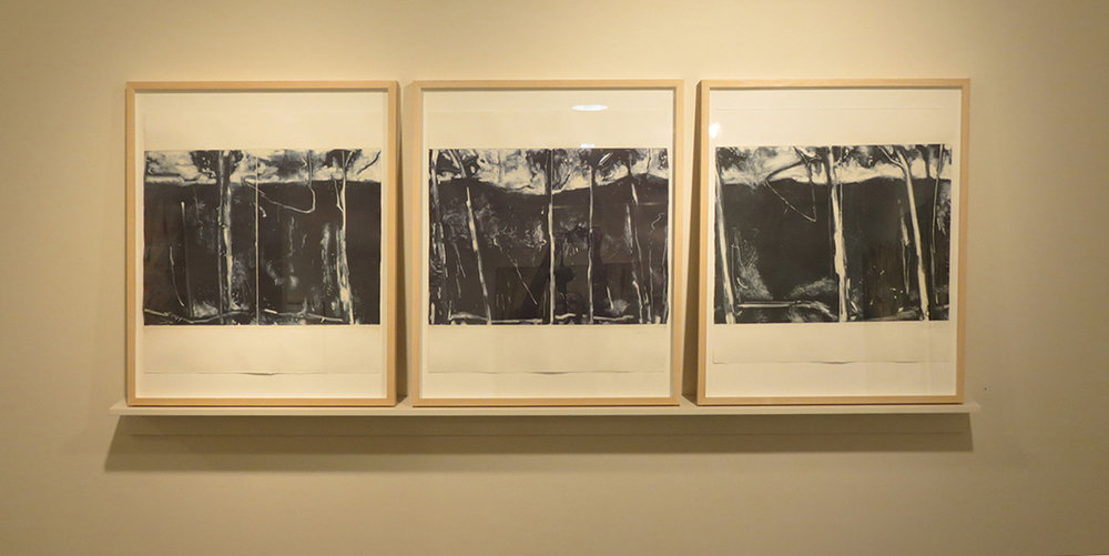 9. Jo Darvall, 'Numinious (triptych)', 2016, Monoprint chine-collé on Hahnemuhle paper, MDF shelf, 80 x 125cm, $4,800 or $2,200ea