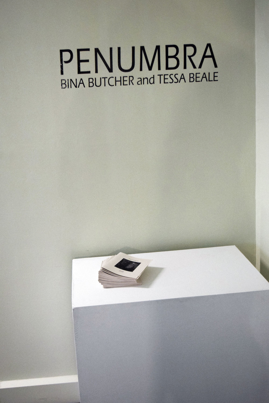 'Penumbra' Gallery View