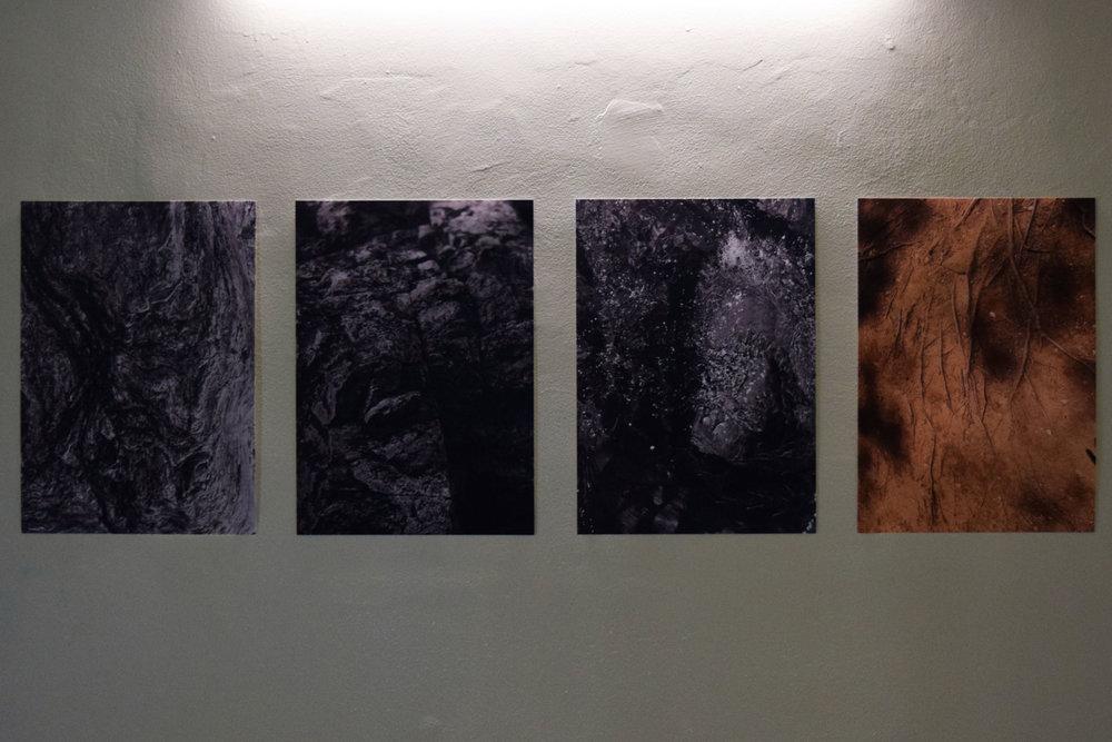 1 - 4. Tessa Beale, Tuft; Tessa Beale, Wash; Bina Butcher, Velvet; Tessa Beale, Worn, 2018, Digital Print, $200 each