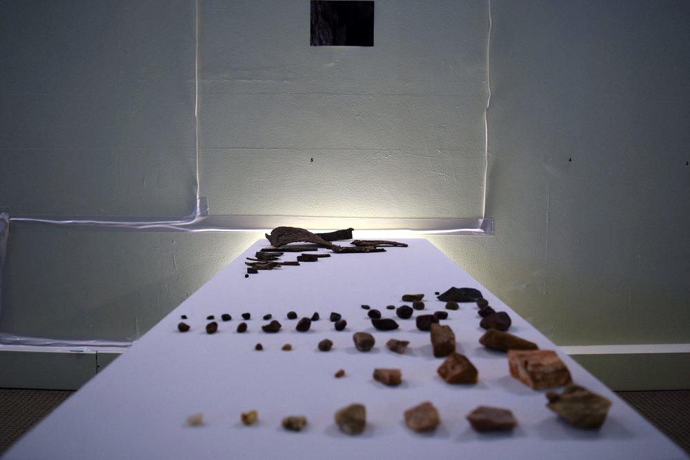 6 Tess Beale & Bina Butcher, Observed, 2018, Found Objects, NFS