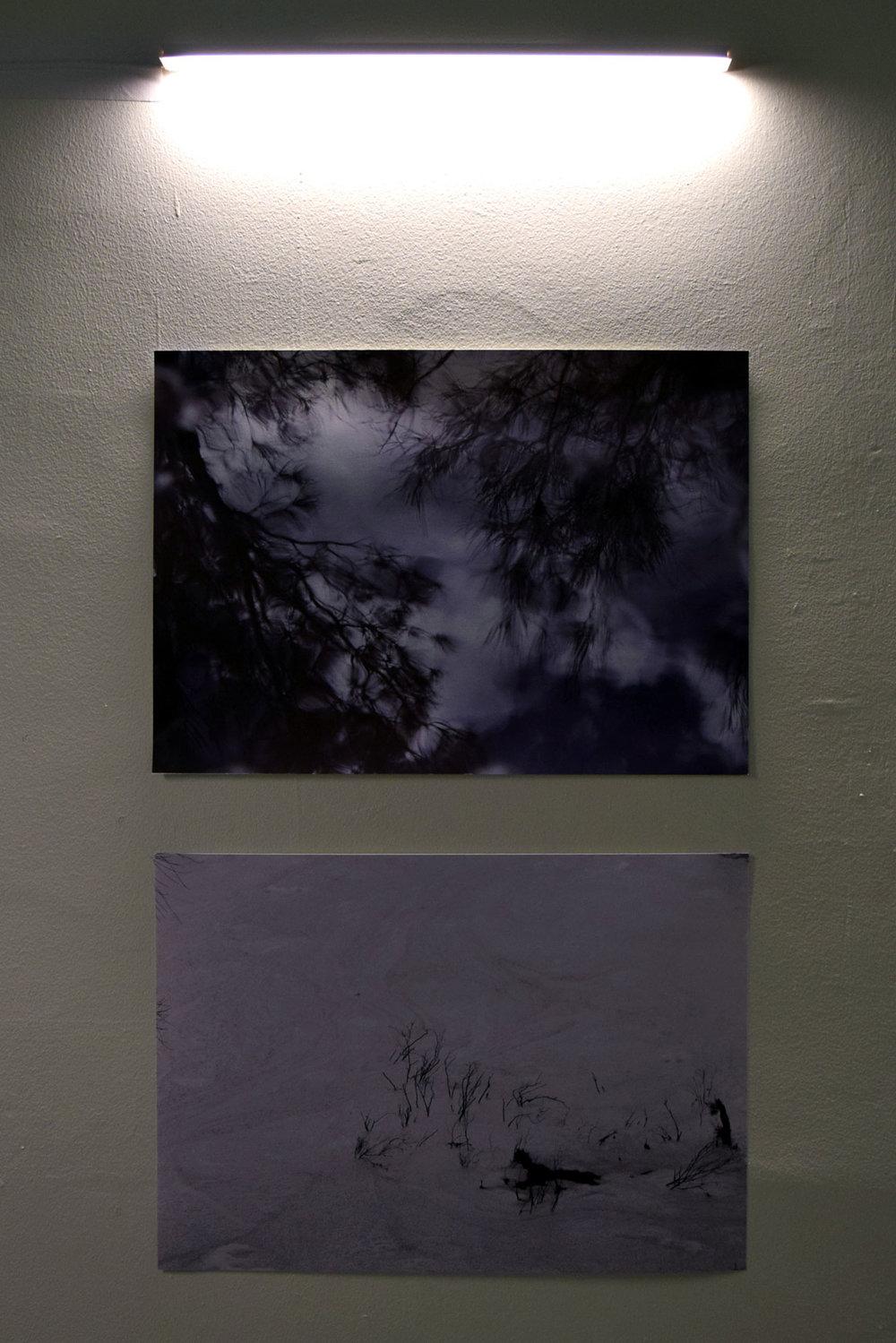 9 - 10. Tessa Beale, Snow; Bina Butcher, Waver, 2018, Digital Print, $200