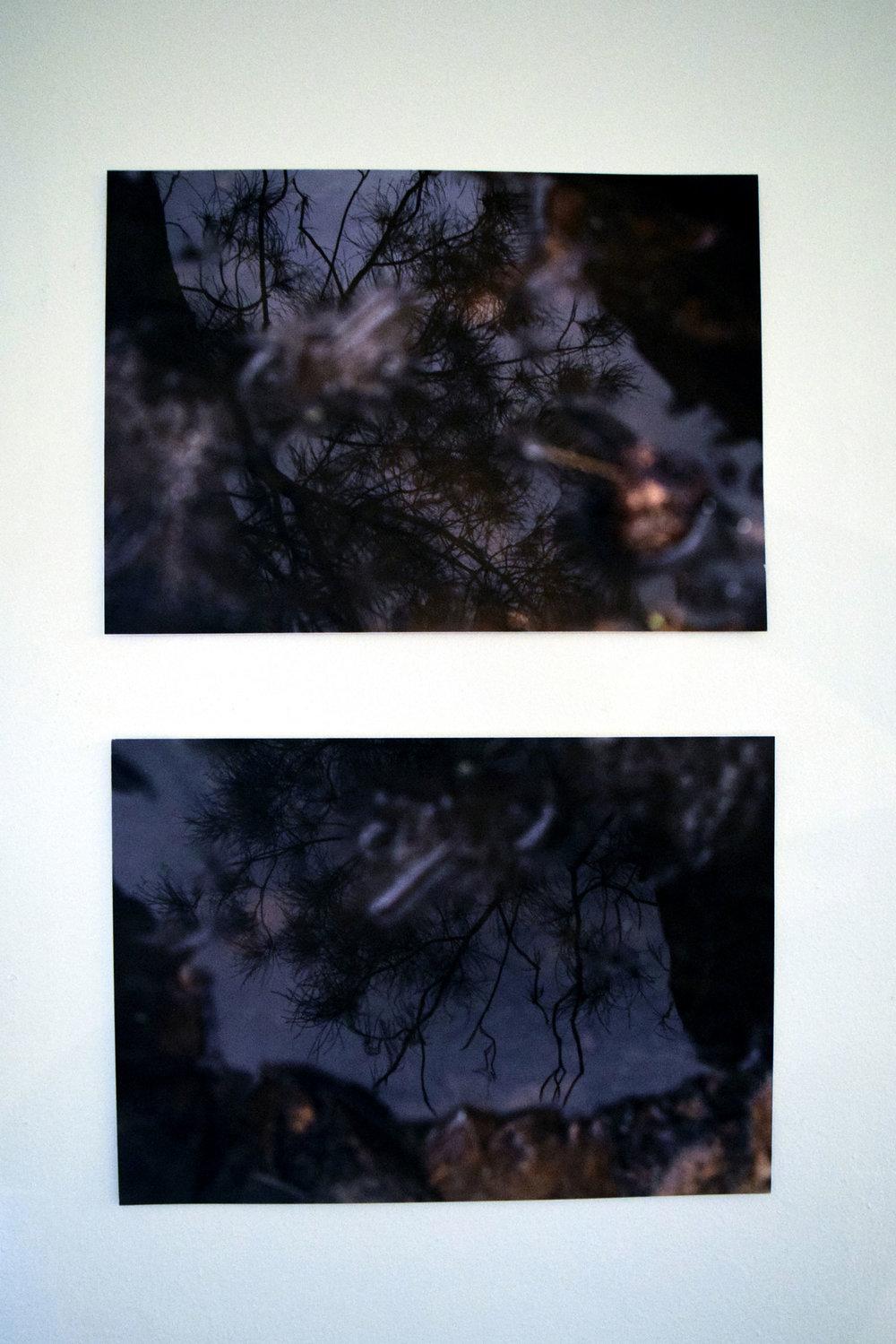 14 Bina Butcher, Resonate, 2018, Digital Prints, set of 2, $160