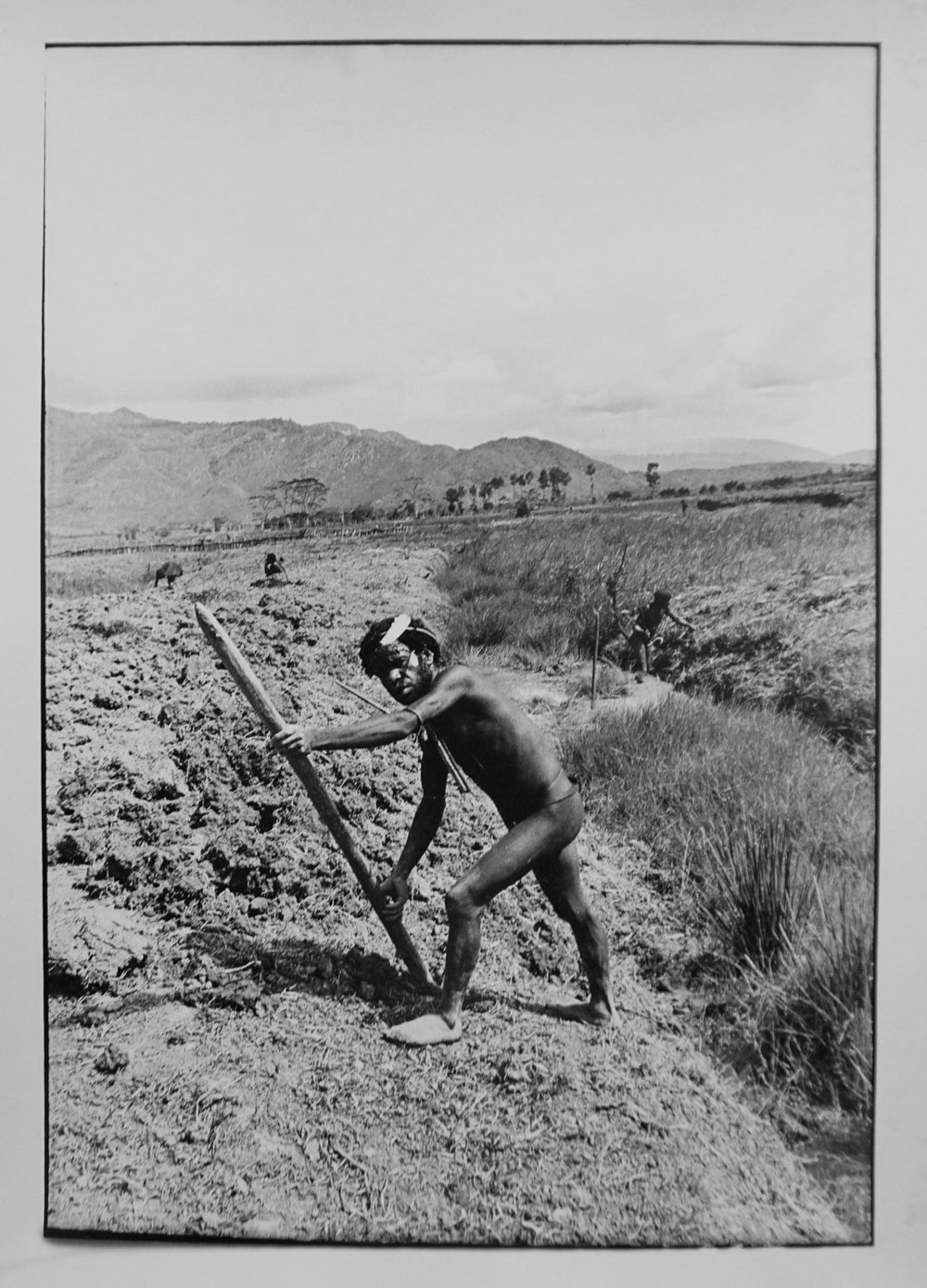 4. Richard Woldendorp, 'Turning soil for sweet potato crop, Baliem Valley, West Irian Jaya, Indonesia', BW201, taken and printed in 1971, Vintage Print.
