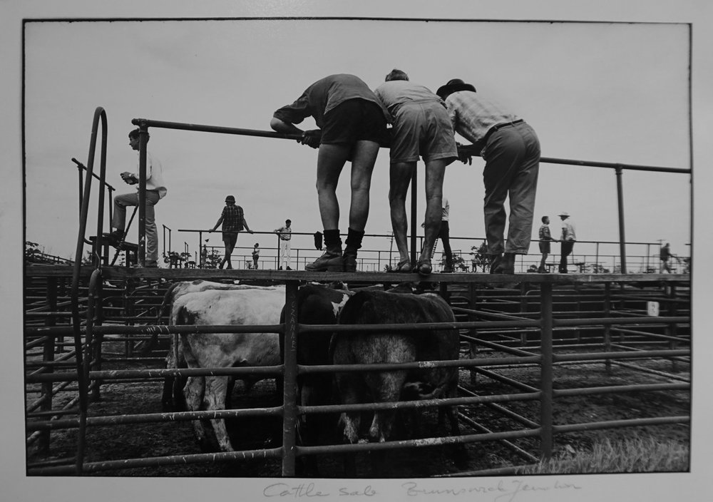 35. Richard Woldendorp, 'Cattle Sale, Brunswick Junction WA', BW112a, taken and printed in 1969, Vintage Print