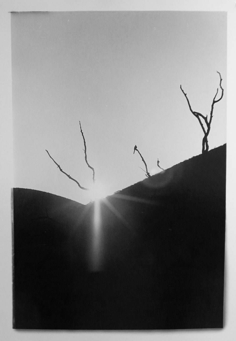 54. Richard Woldendorp, 'Sunrise, Hamersley Range WA', BW55, taken in 1968, printed in 2012