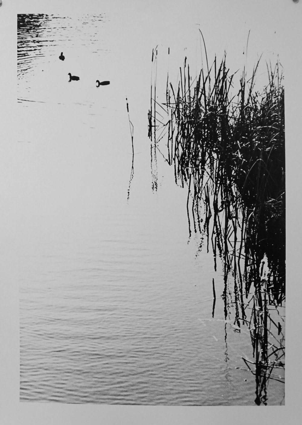 60. Richard Woldendorp, 'Swan River, Perth WA', BW23a, taken and printed in 1959, Vintage Print
