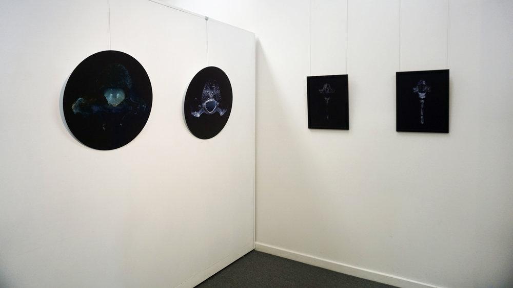 Stephanie Reisch, Silent Synchronicity - Installation View, MAC, June 2018