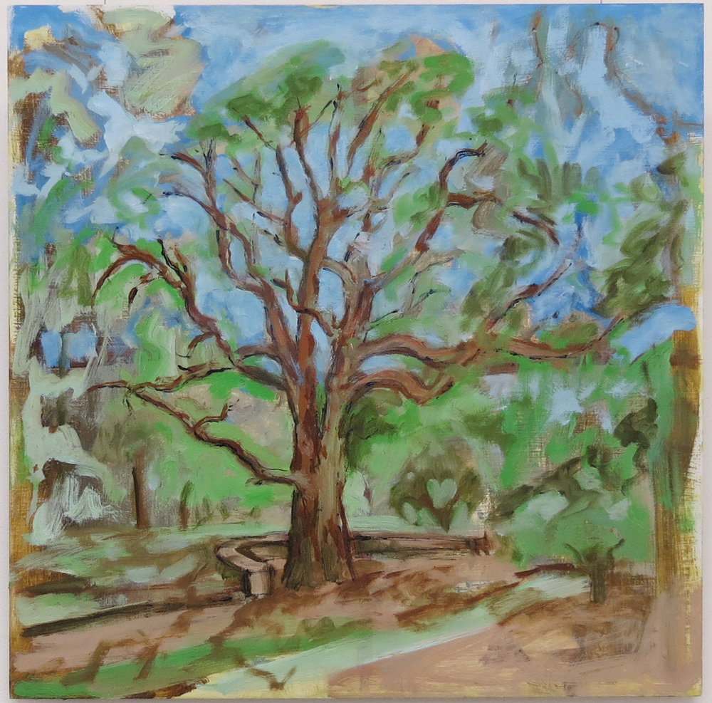 Harrison See, Railway Tree Study (Railway Reserves Heritage Trail), 2018, Oil on board, $360