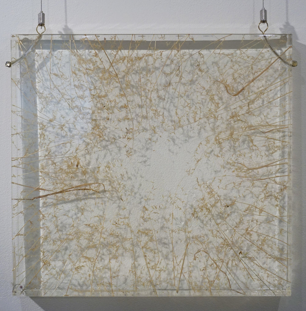 32. Elle-Rose Dunn,  Daydreams in the Field , Botanical resin painting, $1,150