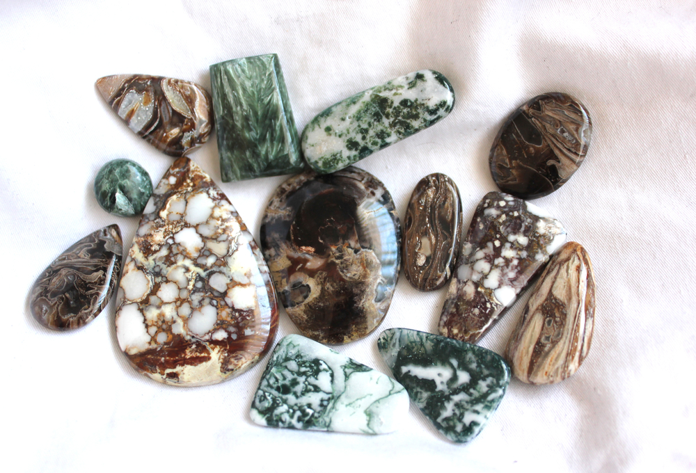 Petrified wood, Wild Horse, Green tree agate, and Seraphinite