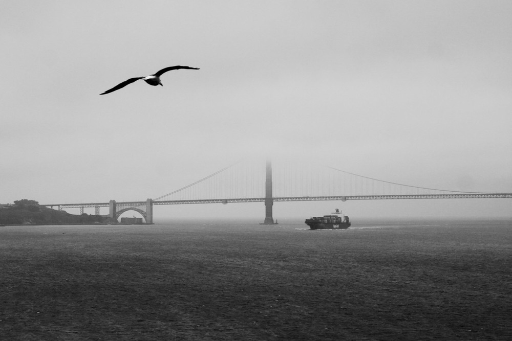 The top of San Francisco's Bay Bridge disappears in the afternoon fog.