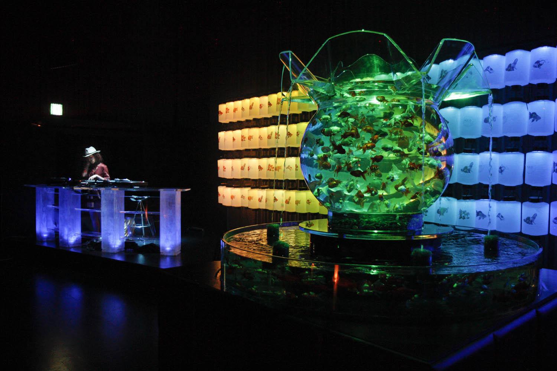 Fish aquarium olx delhi - Fish Tank Art
