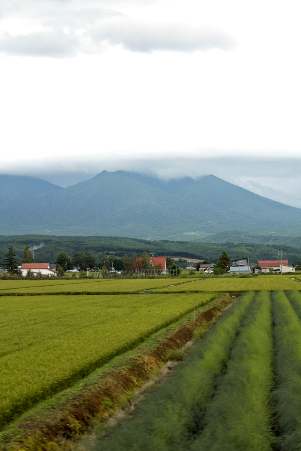 Fields and mountains covered the landscape in Furano, Hokkaido.