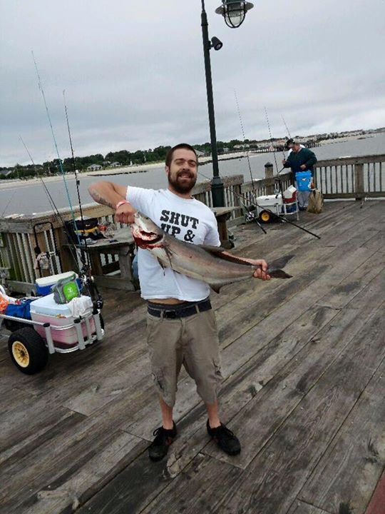 Ryan Birch caught this cobia on 6/7/15. Congrats Ryan!