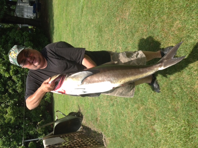 Employee Danny Dearman with his 60lb Cobia on June 12, 2015.