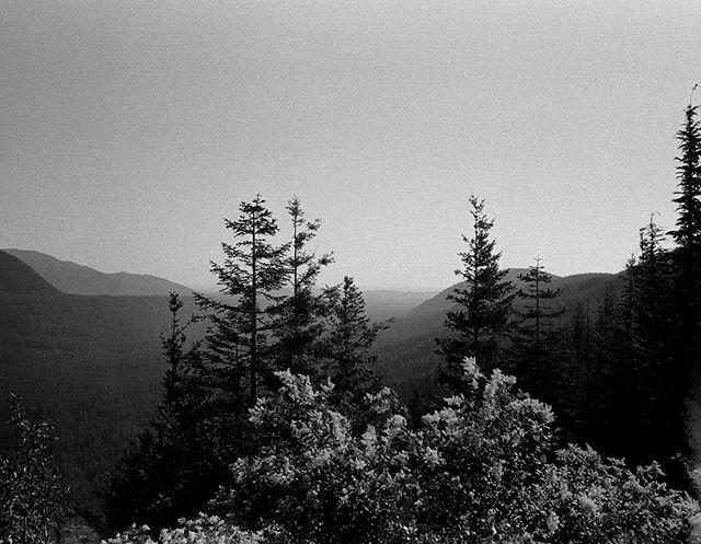 July hike #35mm #olympusmjuii