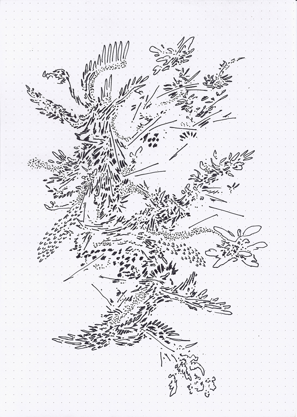 Field Drawing 12 (175dpi).jpg