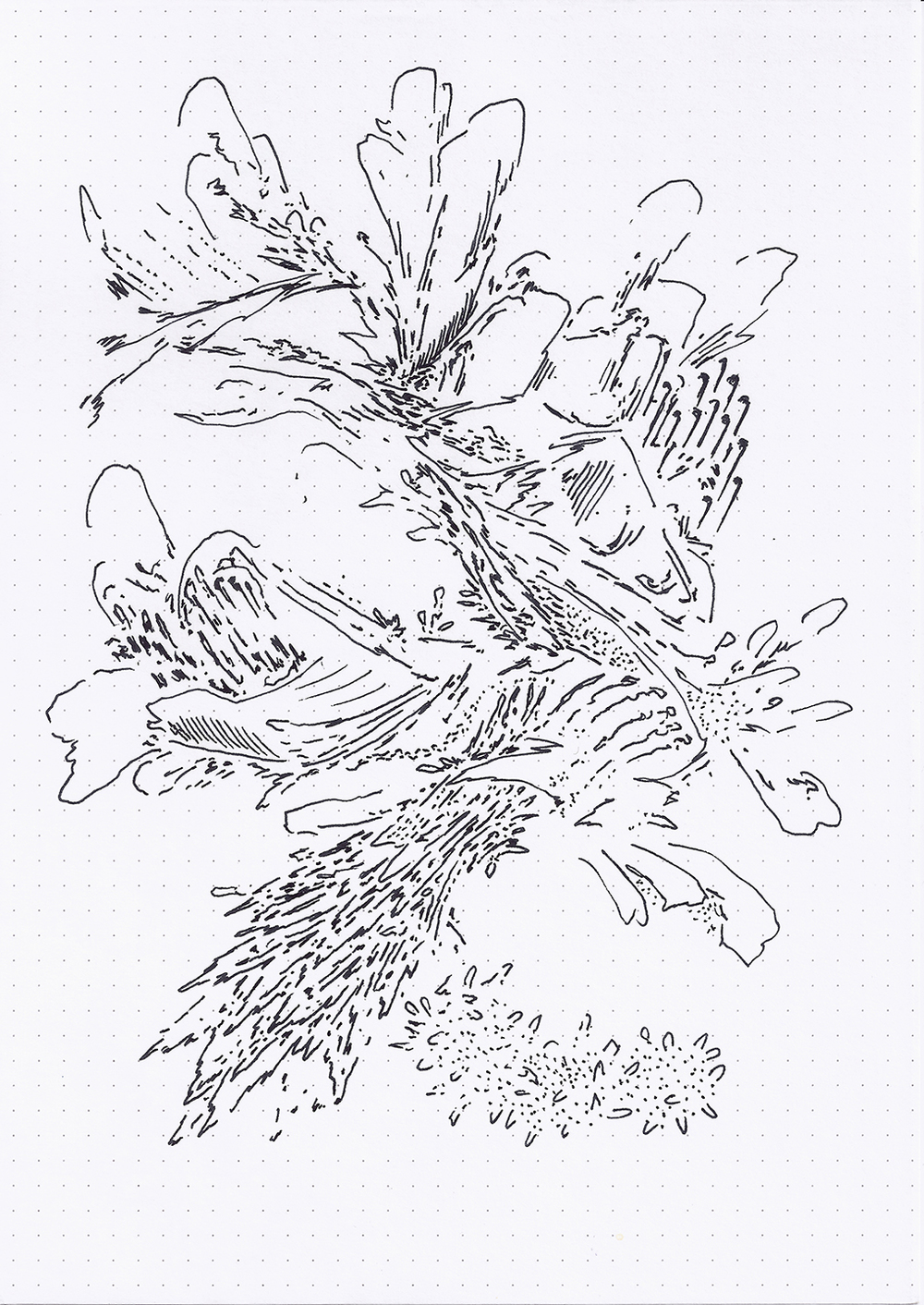 Field Drawing 15 (175 dpi).jpg