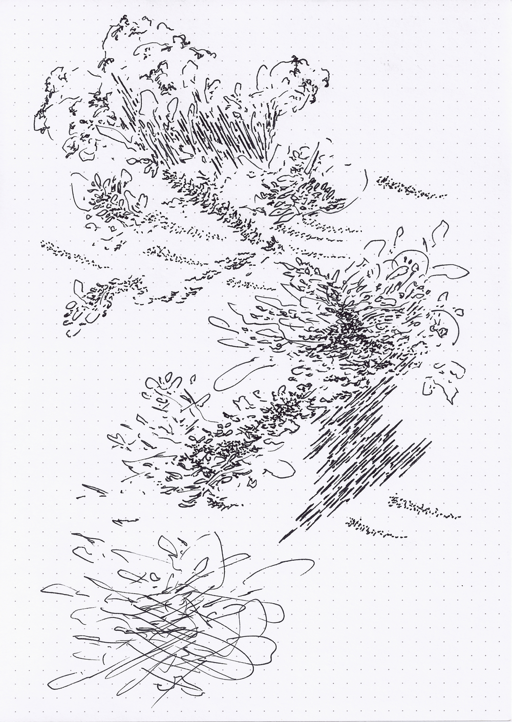 Field Drawing 14.jpg