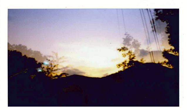 photos 6.jpg