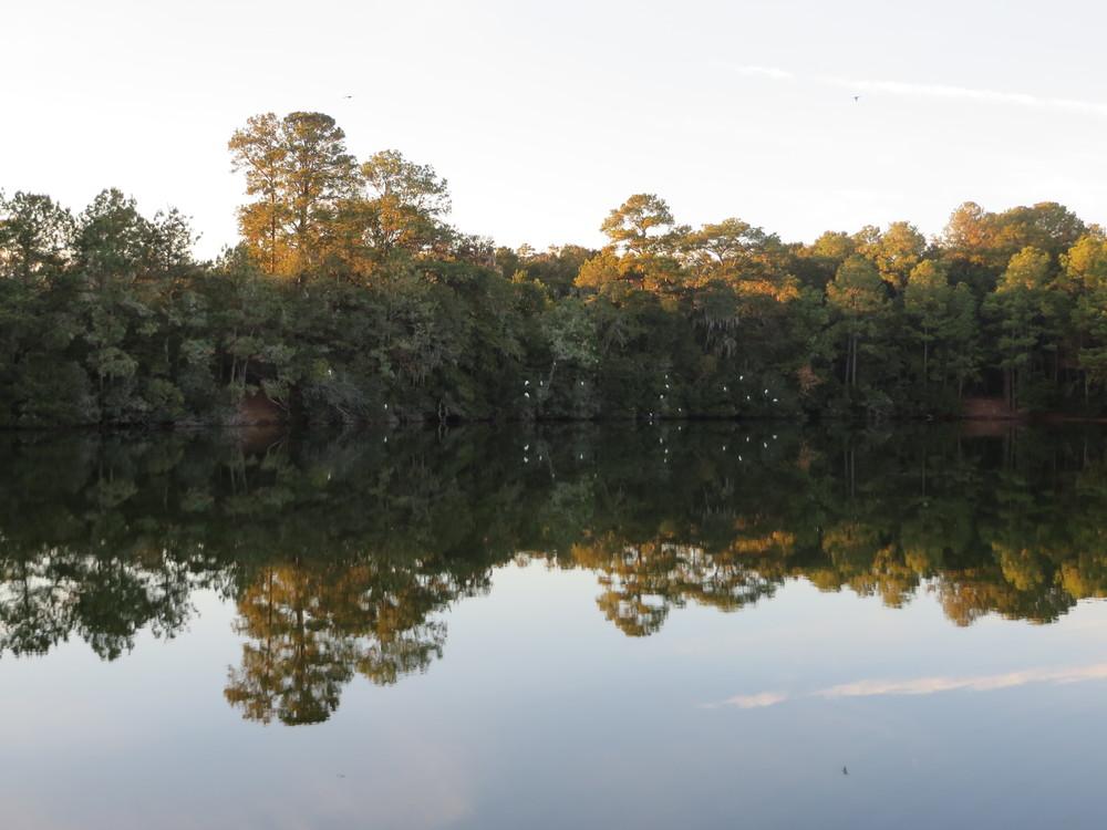 Crystal Lake on Lady's Island