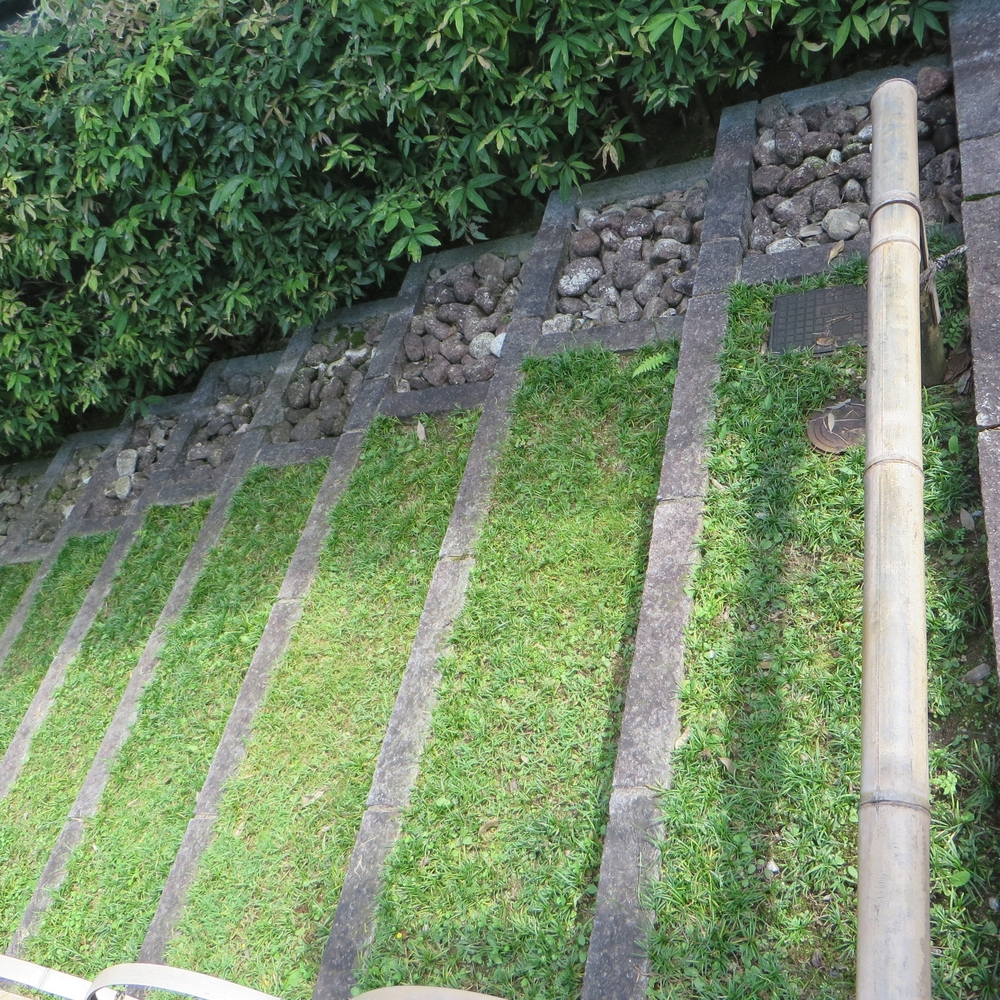 grass & rock steps phoenix temple.JPG