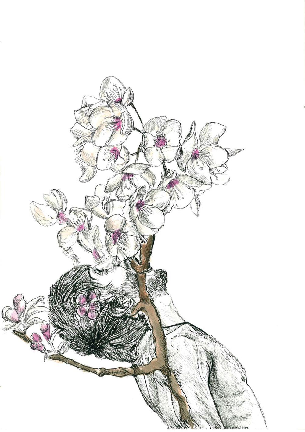 apple blossom man
