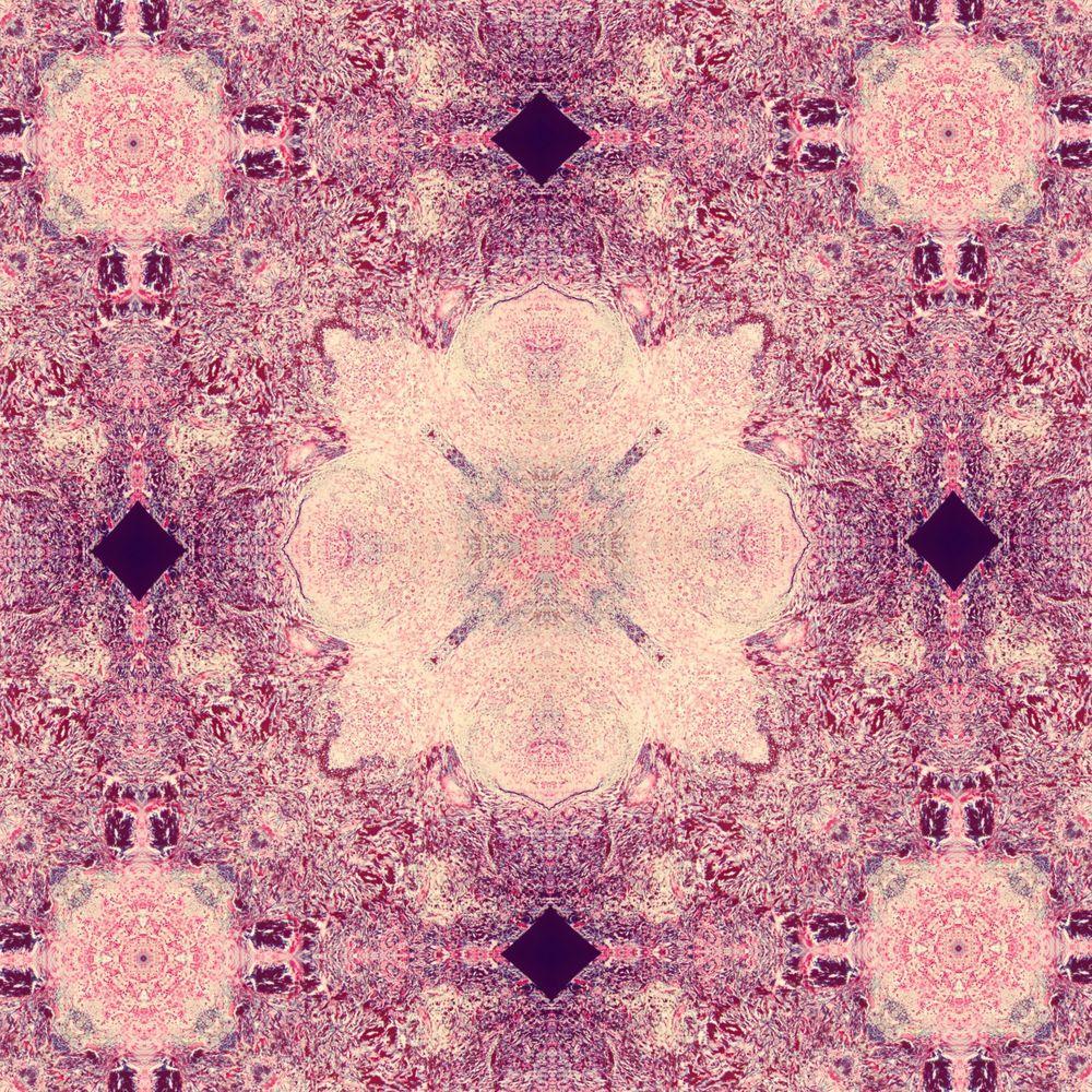 splenic tissue mandala 2.jpg
