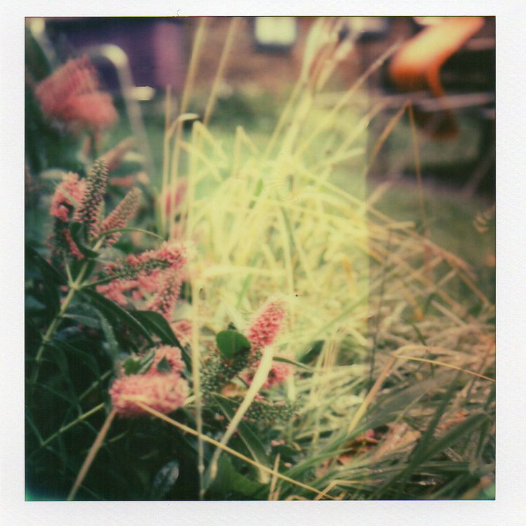 polaroids_02.jpg
