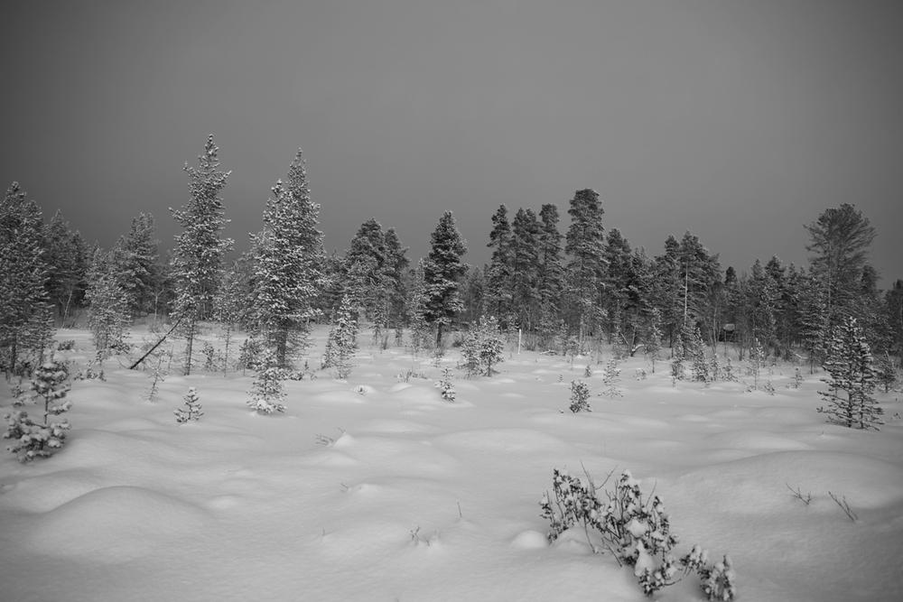 Finland 2012
