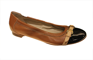 shoe_315.png
