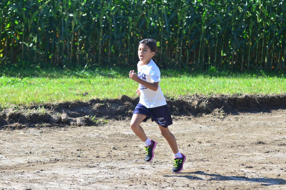 ACHS Fun Run 2014 (11 of 44).jpg