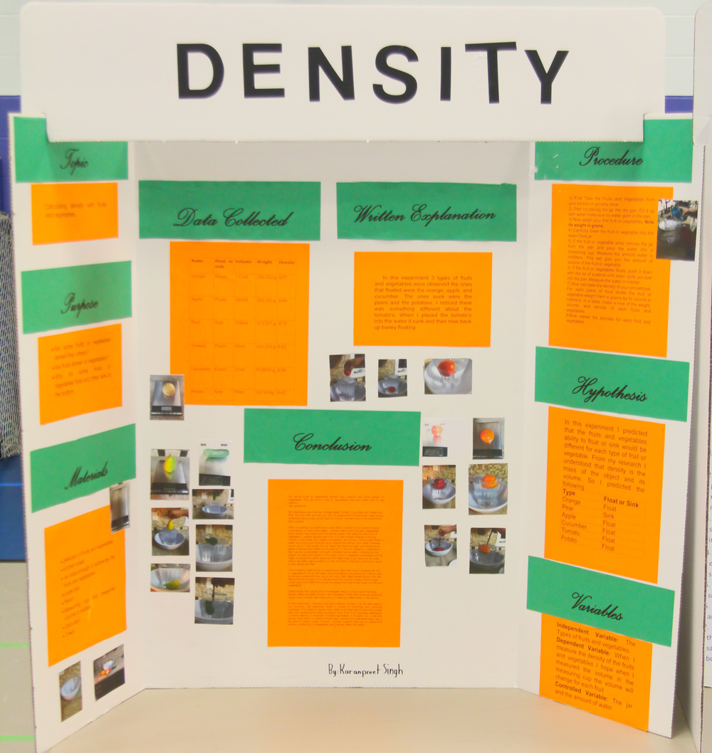 Science Fair and Invention Convention 2014 (16 of 31).jpg