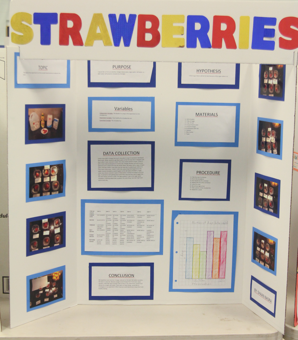 Science Fair and Invention Convention 2014 (21 of 31).jpg