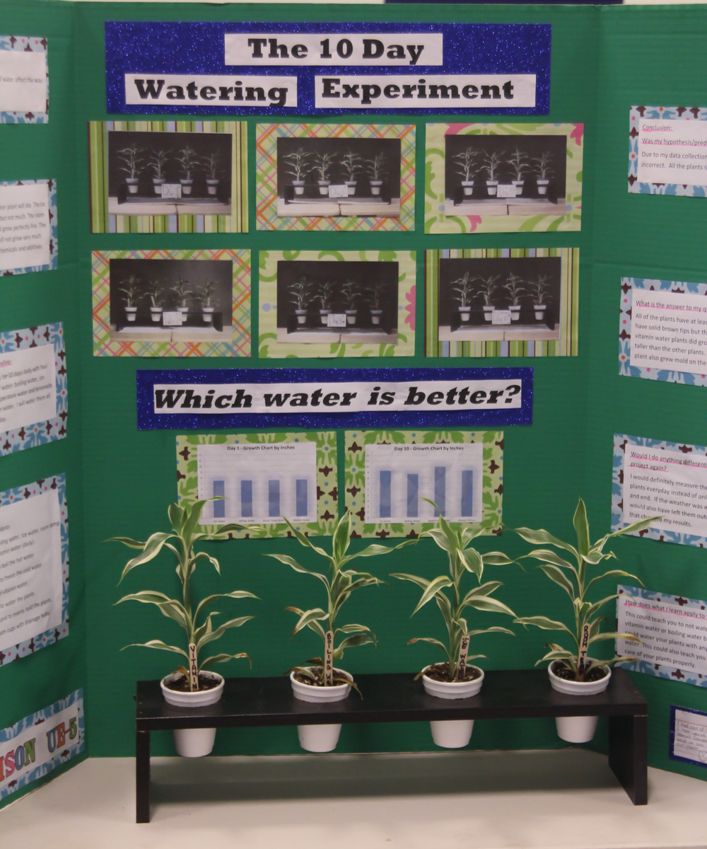 Science Fair and Invention Convention 2014 (22 of 31).jpg