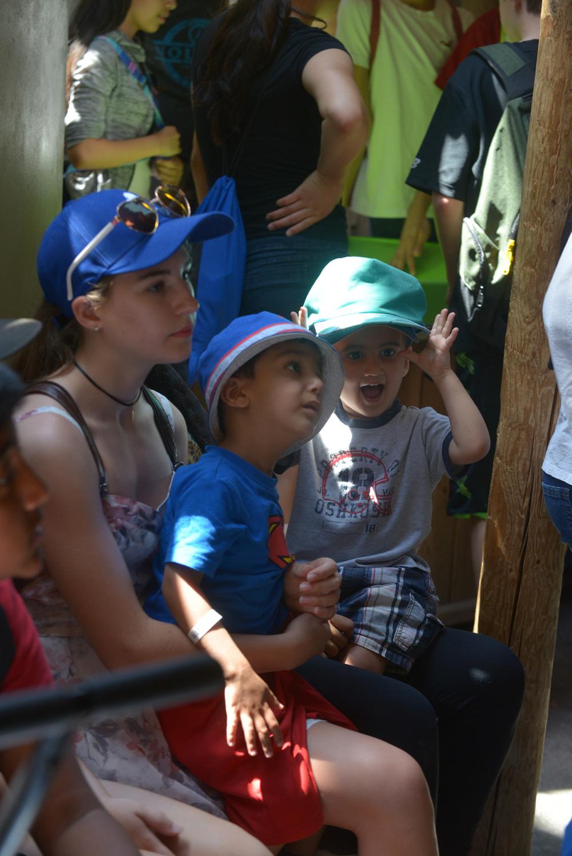 Reading Buddies Zoo Trip-55.jpg