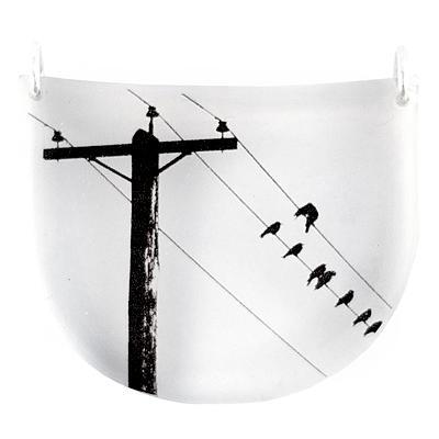 Drop-crow.jpg