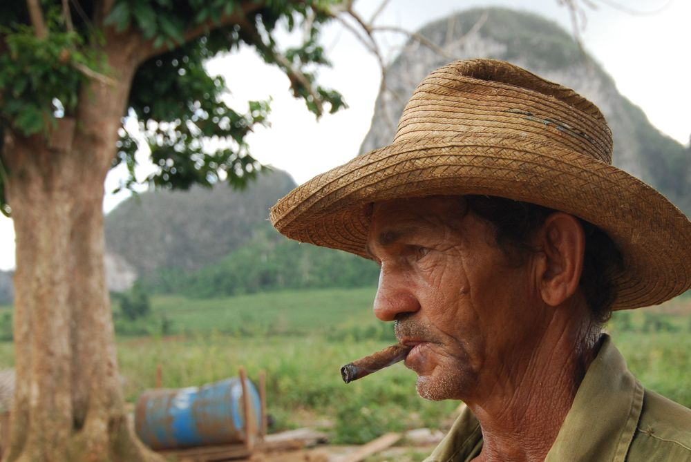 Tobacco Farmer Profile