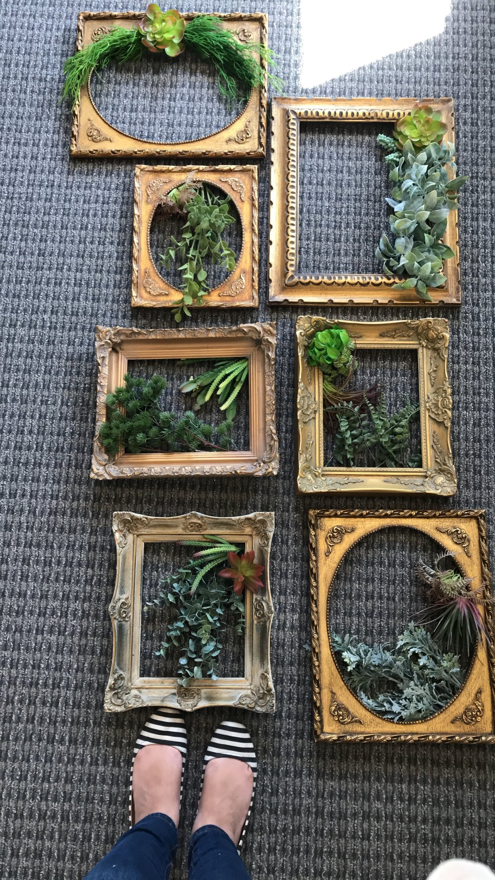 Antique Frames from Brocante Market, adorned with faux succulents by resident DIY-er, Nicole!