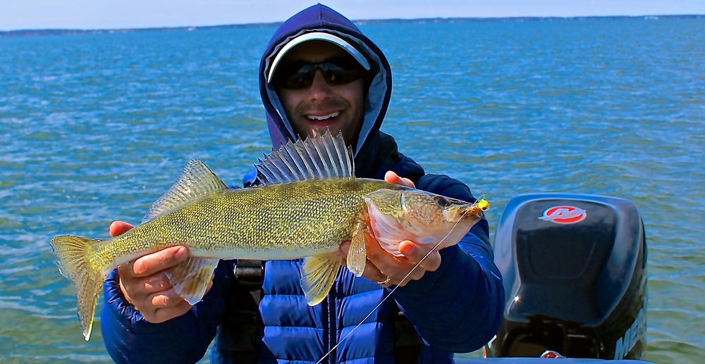 Houghton Lake Walleye