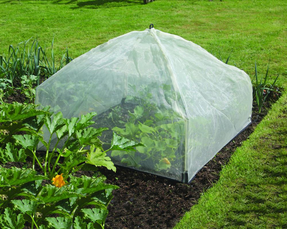 50 6030 Tierra Garden Haxnicks Micromesh Easy Lantern Cloche In Use HI
