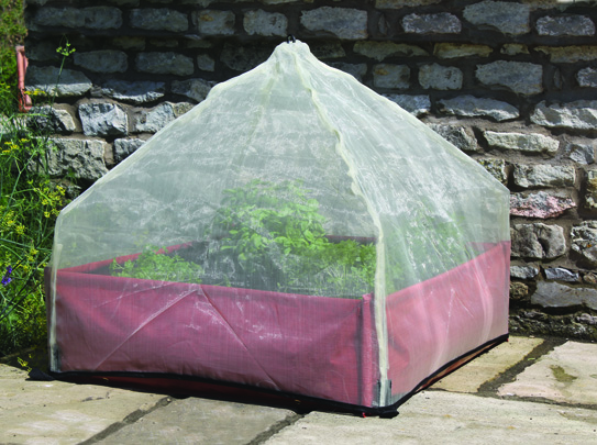 Haxnicks Giant Lantern Cloche Fits Perfectly Over Instant Raised Bed.jpg