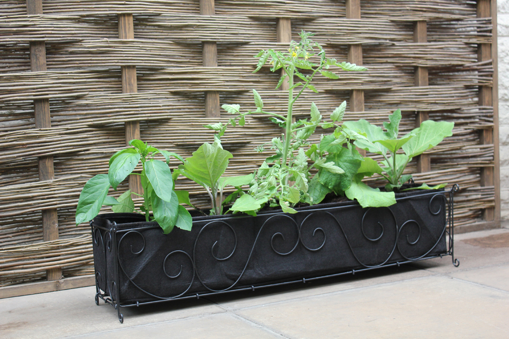 50-VIG50 Haxnicks Long Vigoroot Planter.jpg