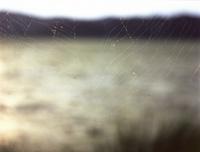 web-0.jpg