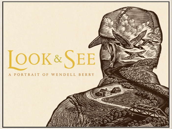 Look-and-See.jpg
