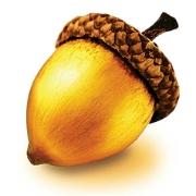 golden-acorn-casino-squarelogo-1462369646556.png