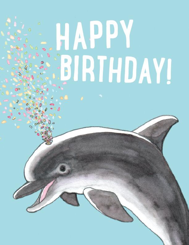 card-tn-_0004_dolphin.jpg