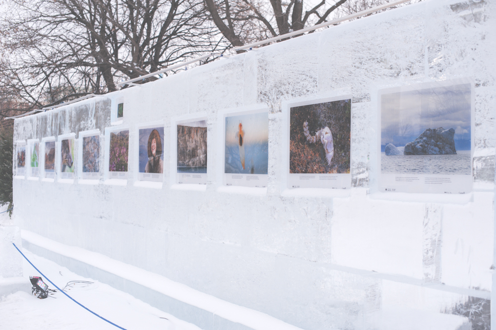 ice sculpture wall