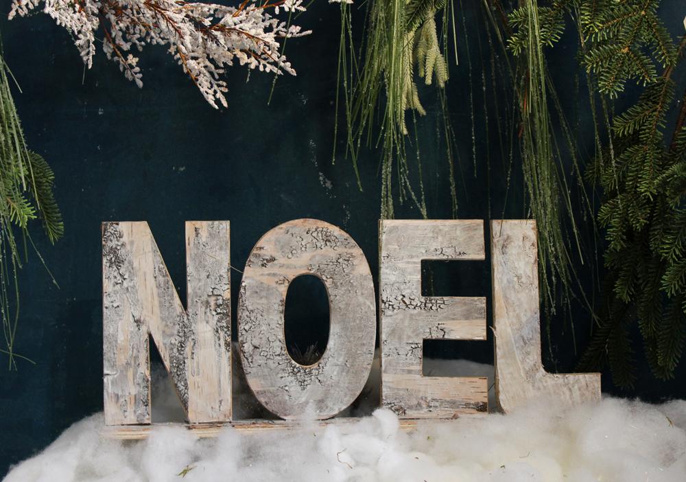 Day 10_Noel.jpg